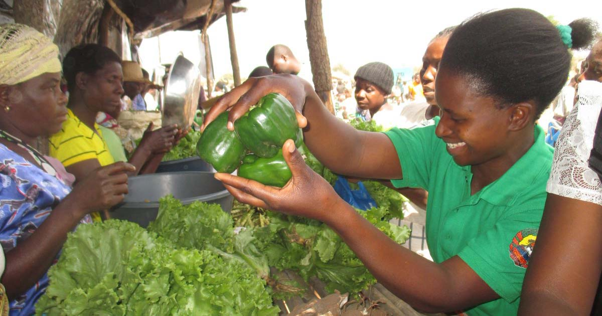 A Farmers' Market in Zambia – sustainability volunteering matters.