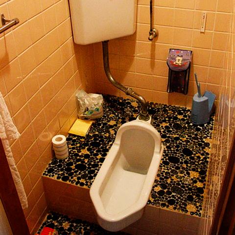 The balancing act toilet