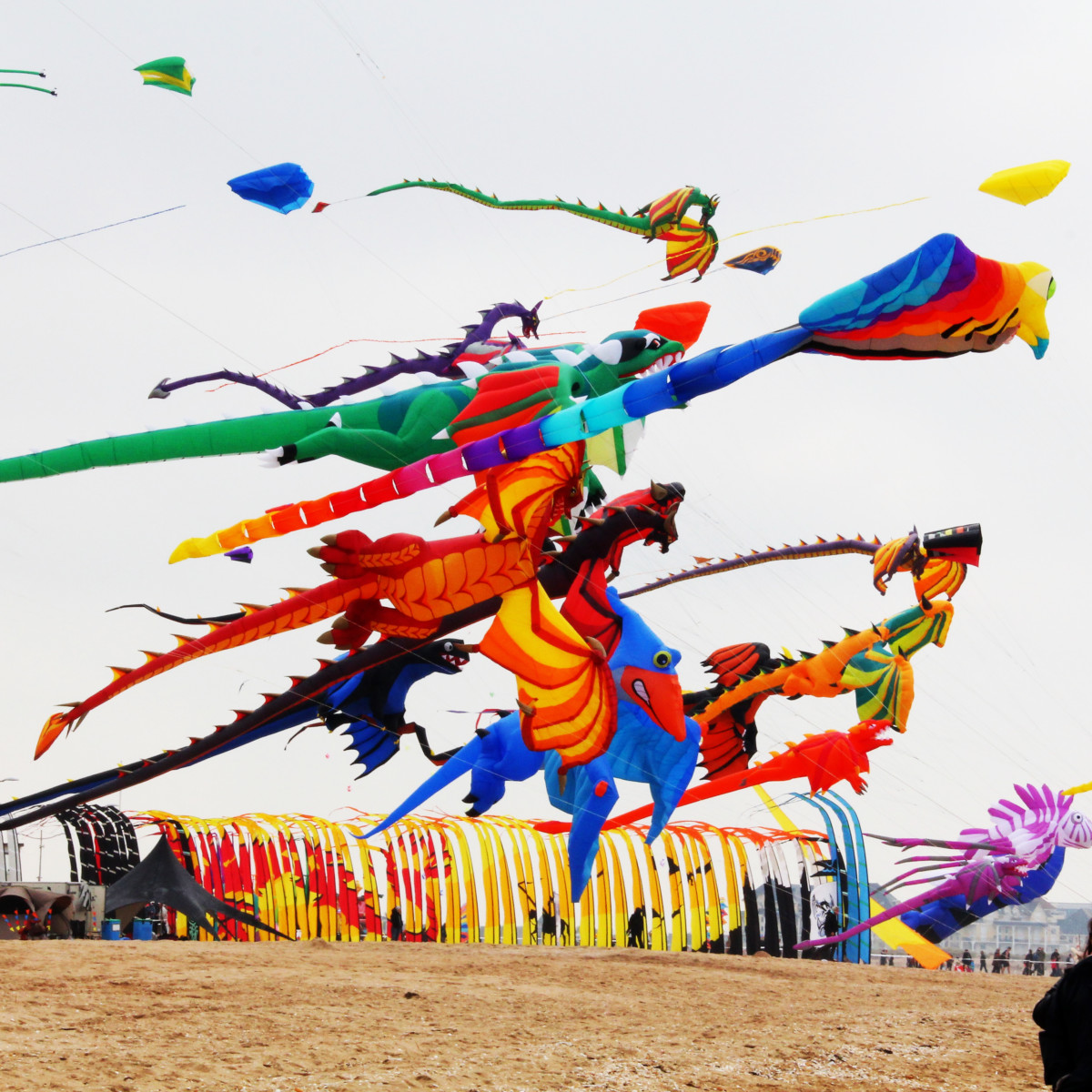 International Kite Festival of Gujarat India