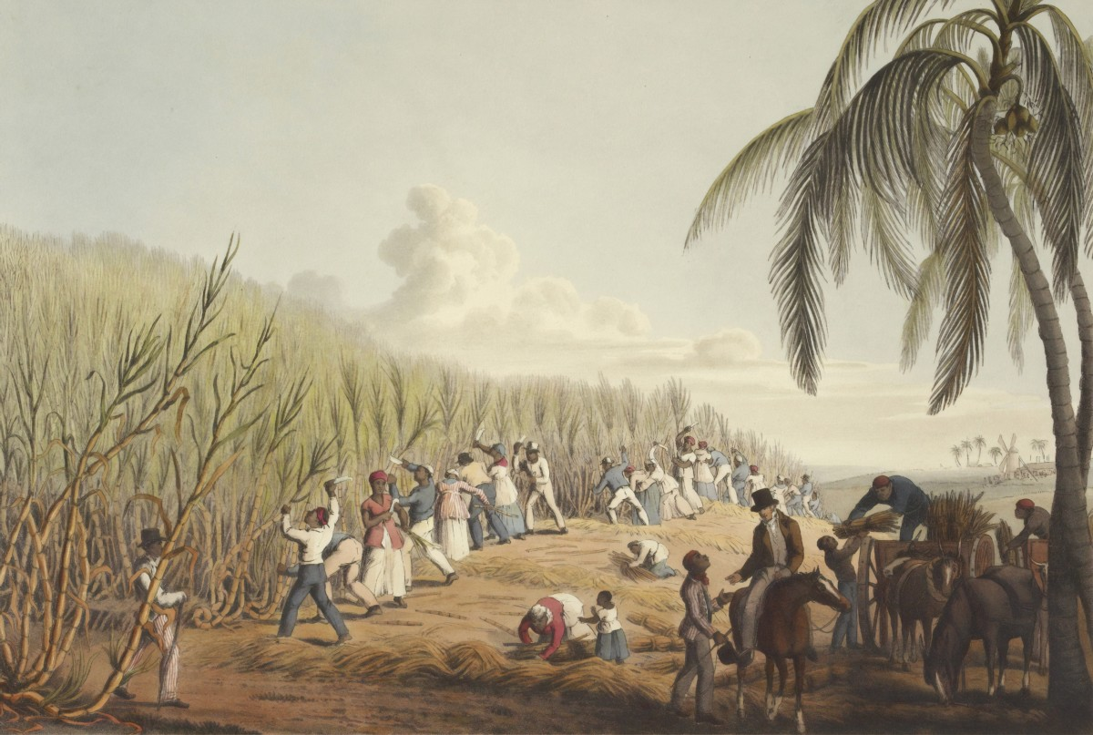 Colonialism, The Hidden Cause Of Our Environmental Crisis