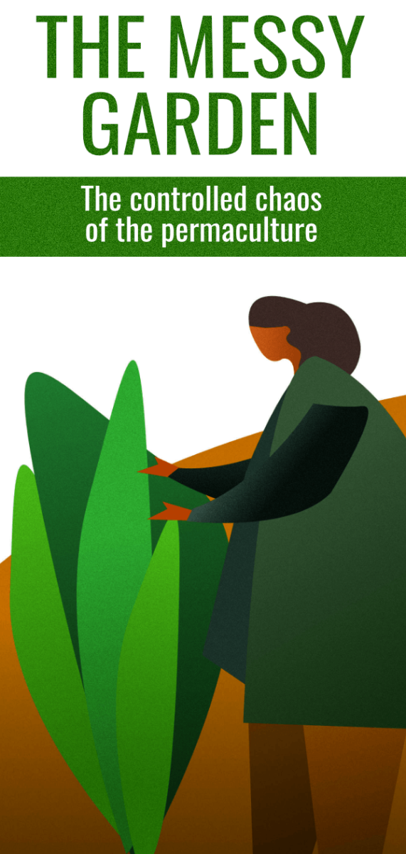 Permaculture gardening benefits