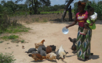 Families in Development